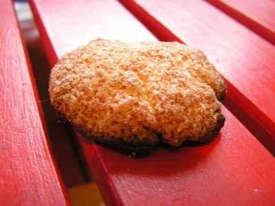 recette - biscuits au miel et à la canelle