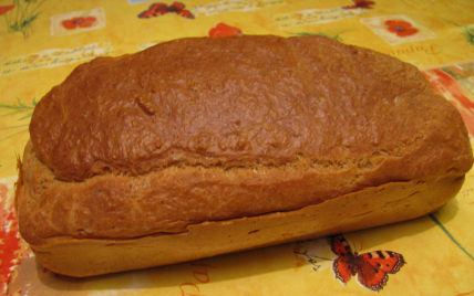 recette - cake au thon thermomix