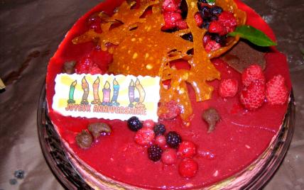 recette - gâteau à la mousse de fruits rouges
