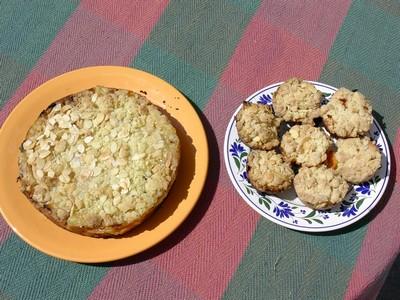 recette - gâteaux autrichien aux abricots