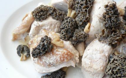 recette - poulet au vin jaune et aux morilles