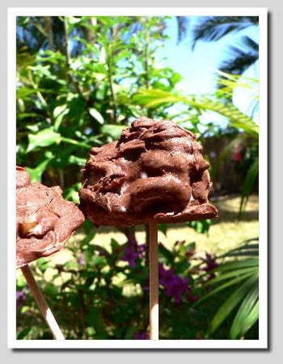 recette - sucette glacée chocolat abricot