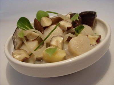 recette - blanquette de noix de pétoncles, champignons et noisettes