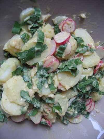 recette - salade de pommes de terre à l'ail des ours