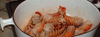 recette - langoustes à l'armoricaine