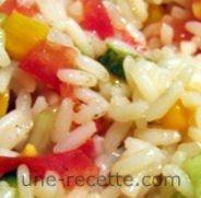 recettes riz-en-salade