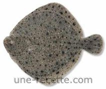 recettes turbot